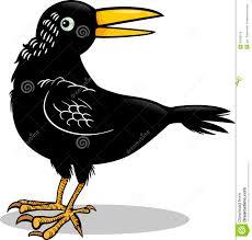 image-corbeau