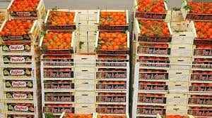 caisses fruits