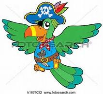 perroquet illustrations 2