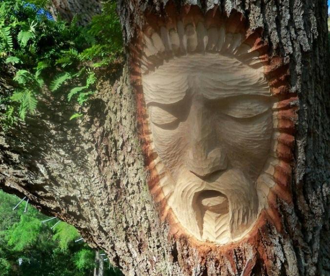 Esprit de la forêt 7
