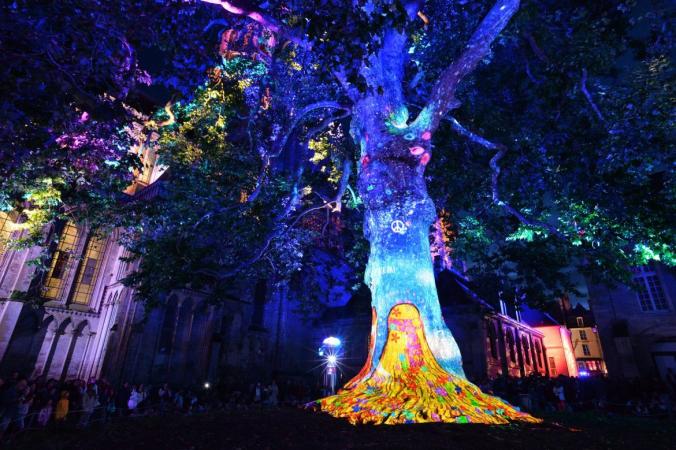 arbre de la liberté 2