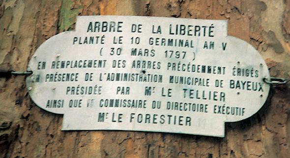 arbre-de-la-liberte-bayeux-1797