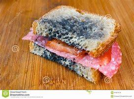 Résultat d'images pour images sandwich moisi